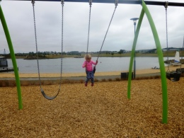 Swing out into the lake!